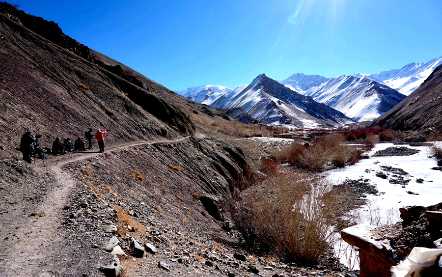 Snow Leopard Trek with Camping